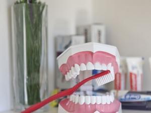 Profilaxie Dentara - Dr. Dumitriu Dental Clinic
